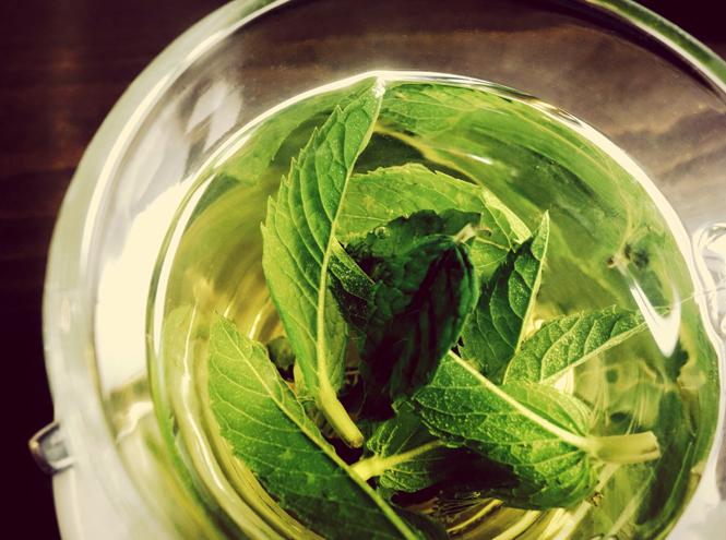 Фото №3 - Все, что вы должны знать о чае