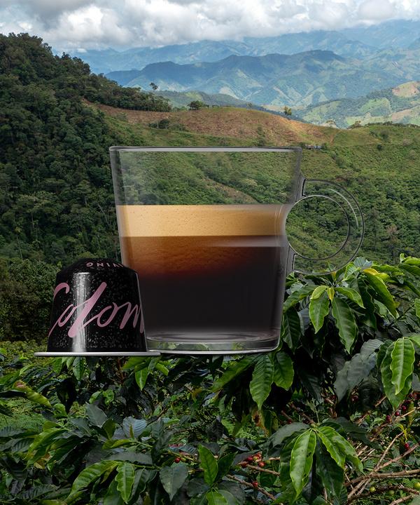 Nespresso представил новые бленды редких сортов кофе