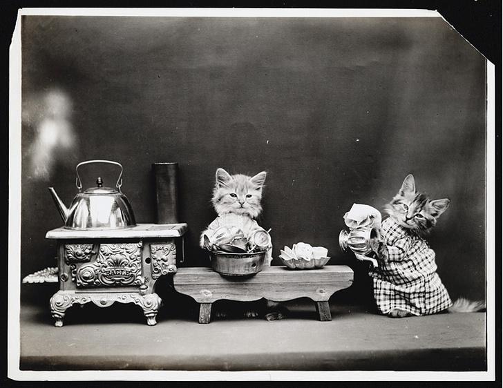 Фото №13 - Живые куклы
