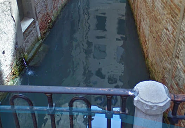 Фото №1 - В Венеции из-за карантина очистились каналы, появилась рыба и вернулись лебеди (видео)