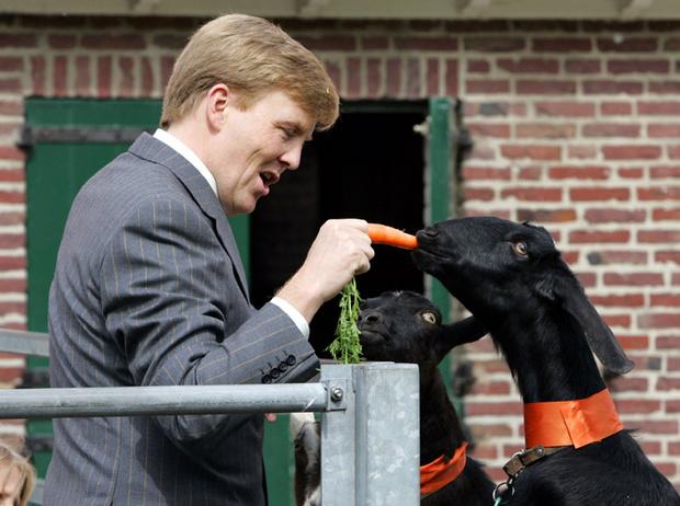 Фото №10 - Виллем-Александр и Максима: история невозможной любви короля Нидерландов