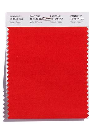 PANTONE 18-1549