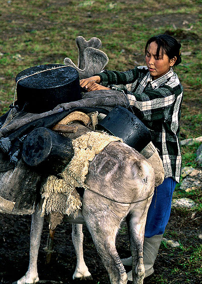 Фото №4 - Духи тайги: как живут оленеводы Тувы