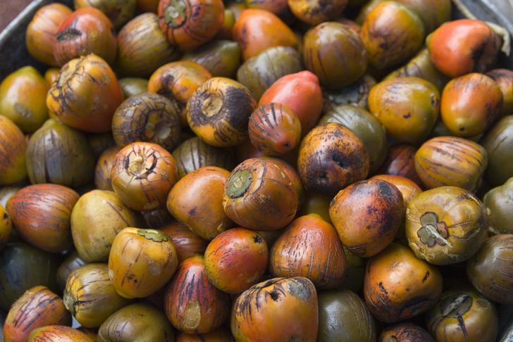 Фото №7 - А это точно съедобно? 10 необычных овощей со всего света