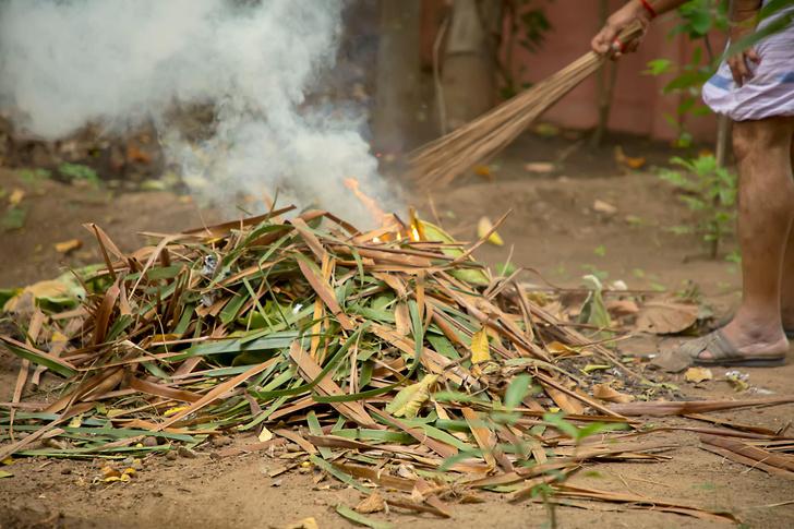 Штраф для дачников за сжигание мусора