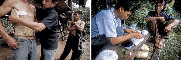Фото №5 - Кока–кома. Боливийский недуг