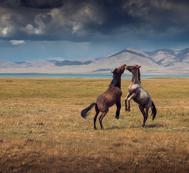 Фото №2 - Особенности travel-фото: как рассказать миру о своем путешествии