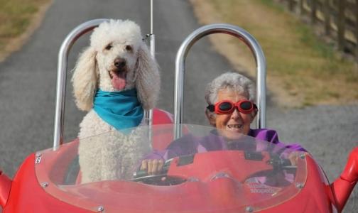 Фото №1 - 90-летняя женщина вместо лечения рака выбрала путешествие