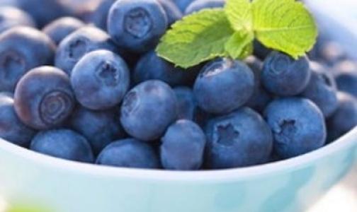 Фото №1 - Черника и красный виноград повышают иммунитет