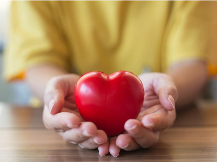 Фото №1 - Добрые дела: как помогать благотворительным фондам