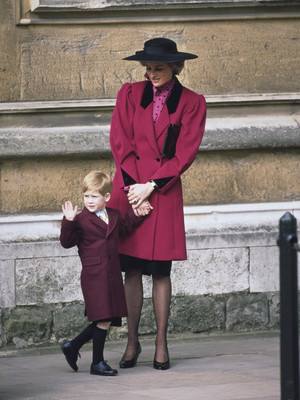 Фото №5 - Любовь матери: почему у Дианы была более сильная связь с Гарри (но не с Уильямом)