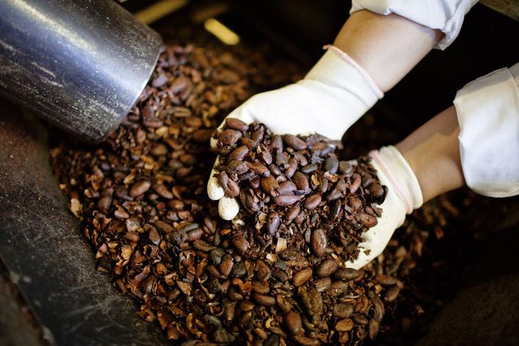 Фото №2 - Всё в шоколаде: репортаж с кондитерской фабрики