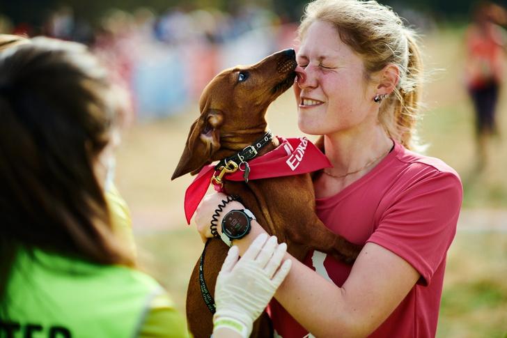 Фото №6 - Пушистый забег: собаки посоревнуются в скорости