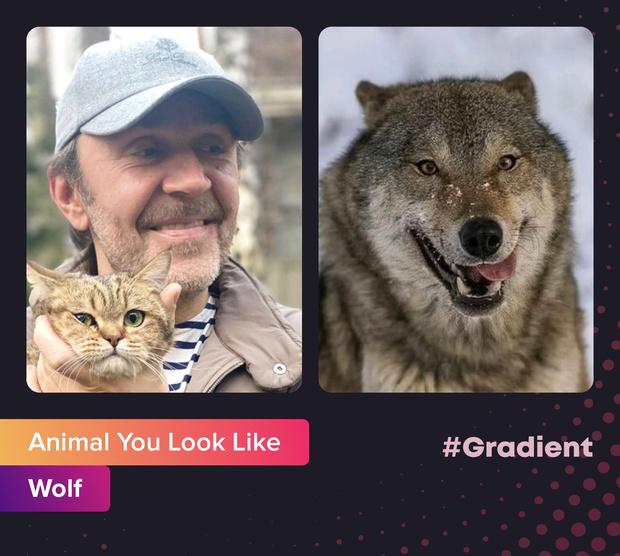 Фото №2 - На какое животное ты похож: новое развлечение от приложения Gradient