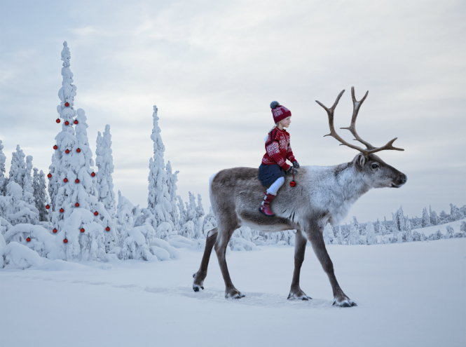 Фото №4 - Как празднуют Рождество в разных странах мира