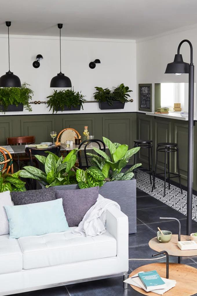 Фото №11 - Растения в интерьере: 7 идей для домашнего сада
