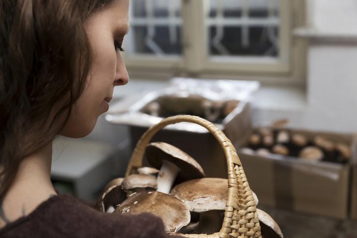 как проверить грибы на съедобность при варке