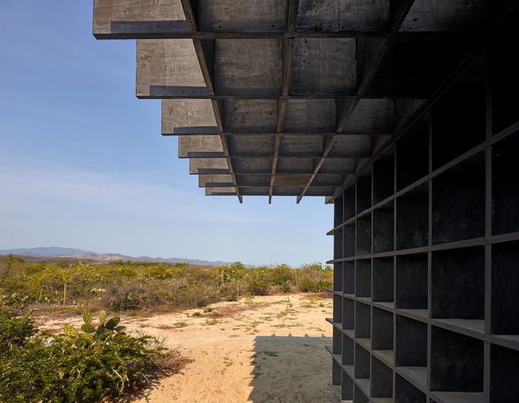 Фото №5 - Курятник по проекту Кенго Кумы в Мексике
