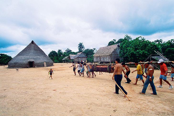 Фото №10 - Банан, лодка, барабан: правила жизни колумбийского племени марубо