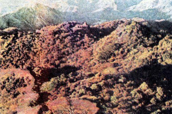 Фото №1 - Дождливые горы Кодагу