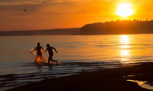 Фото №1 - В Петербурге только два пляжа эпидемиологи признали безопасными для купания