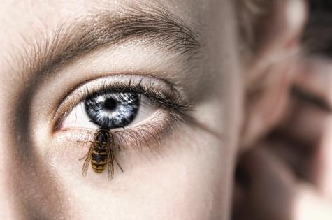 Если ребенка укусила пчела