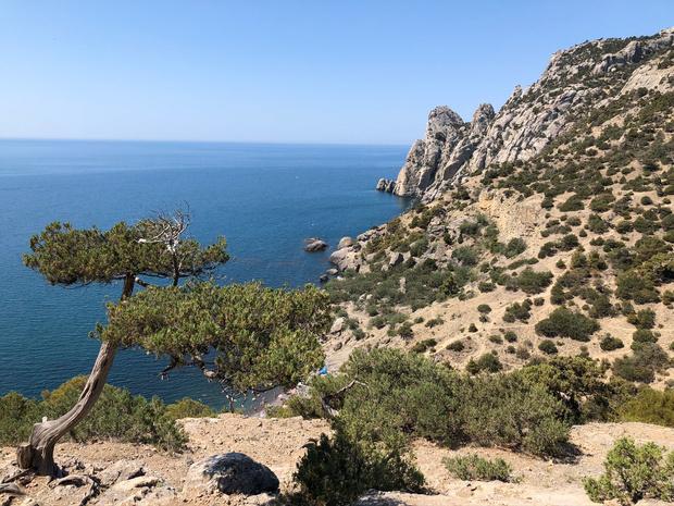 Фото №2 - Не мой Крым: почему я больше не хочу отдыхать на нашем курорте