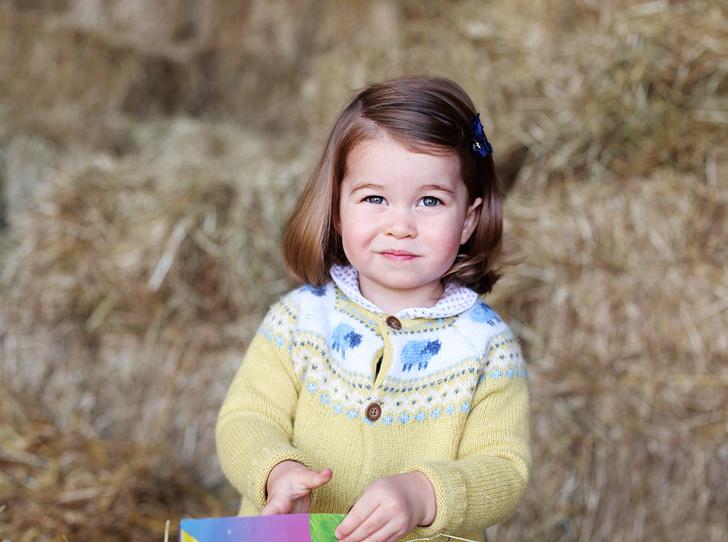 Фото №1 - Новое фото принцессы Шарлотты ко дню рождения
