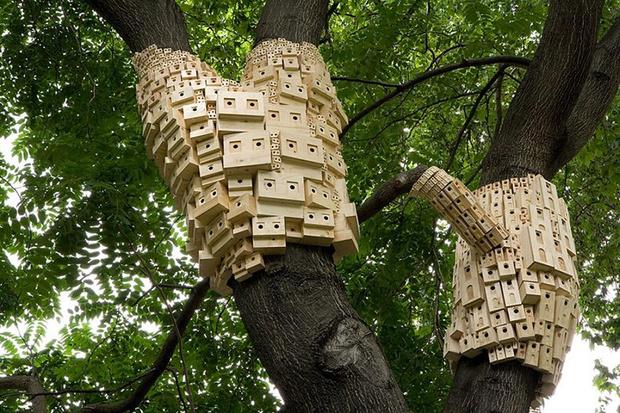 Фото №1 - Дома для птиц в Великобритании