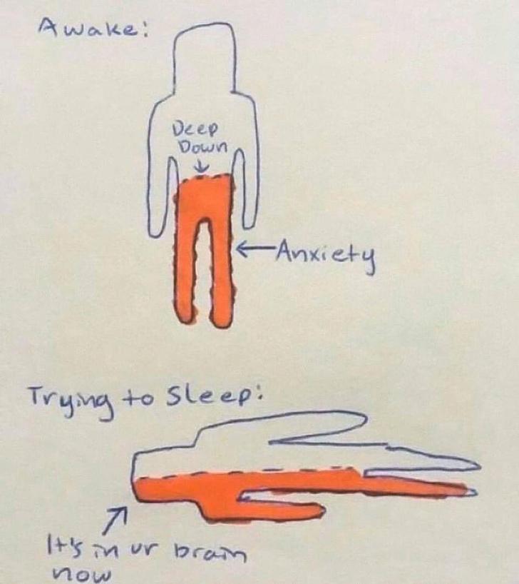 Фото №1 - Нейрохирург объяснила, откуда берется бессонница, в одном шуточном рисунке