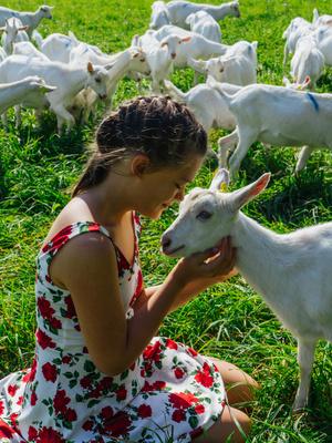 Фото №1 - Волшебный компонент: козье молоко и масло для молодости кожи