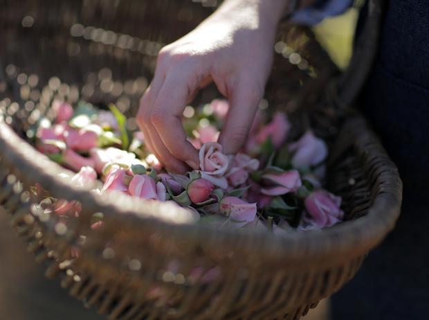 Фото №7 - Декларация любви: новый аромат Miss Dior Eau de Parfum