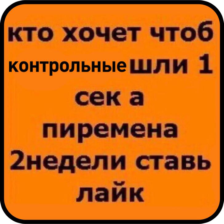 Фото №15 - Лучшие шутки о поручении Владимира Путина сократить количество контрольных работ в школах