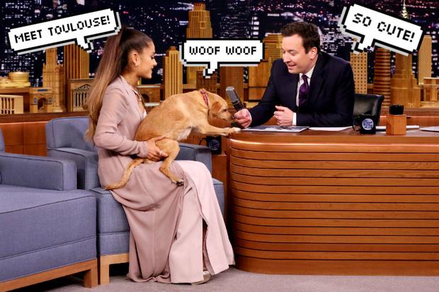 ариана гранде с собакой тулуз на шоу джимми фэллона
