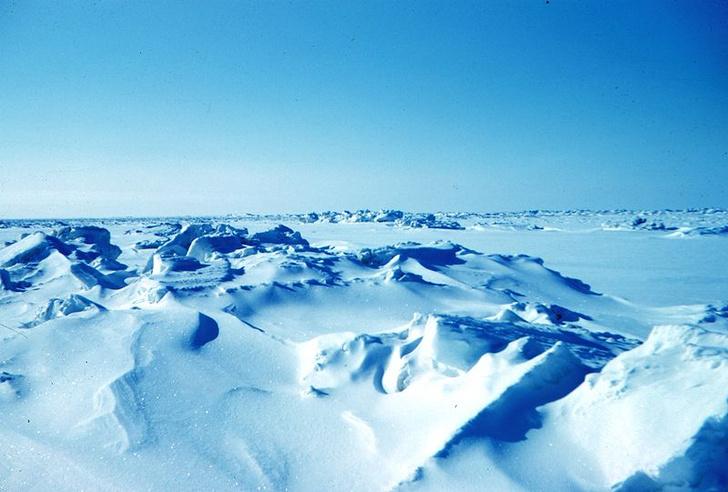 Фото №1 - Специалист по Арктике расскажет об «арктической лихорадке» начала XX века