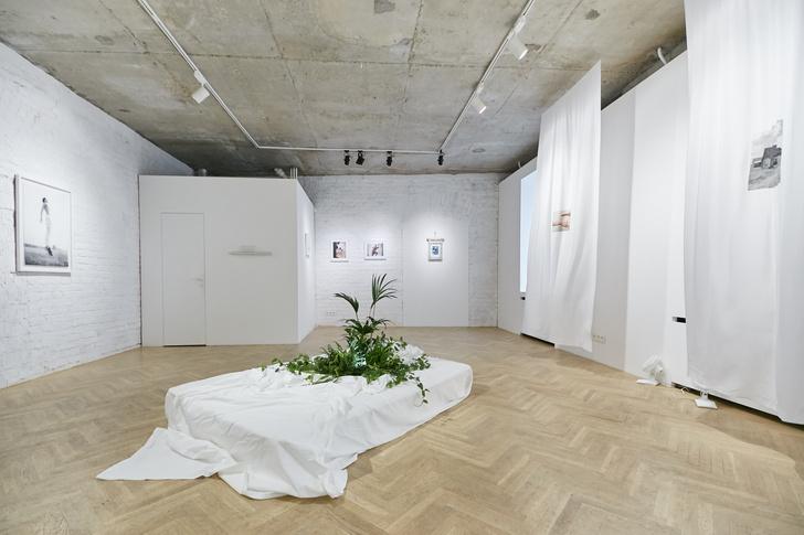 Фото №1 - Размышления о доме и личном пространстве на выставке Topophilia