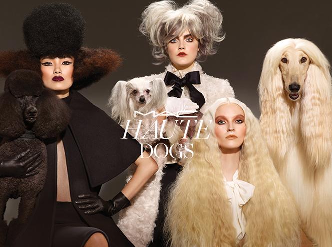 Фото №1 - Дай лапу: коллекция макияжа M.A.C для собачников и их любимцев