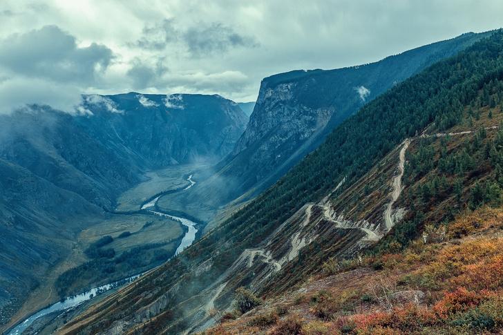 Фото №4 - Год в Сибири: выжить любой ценой