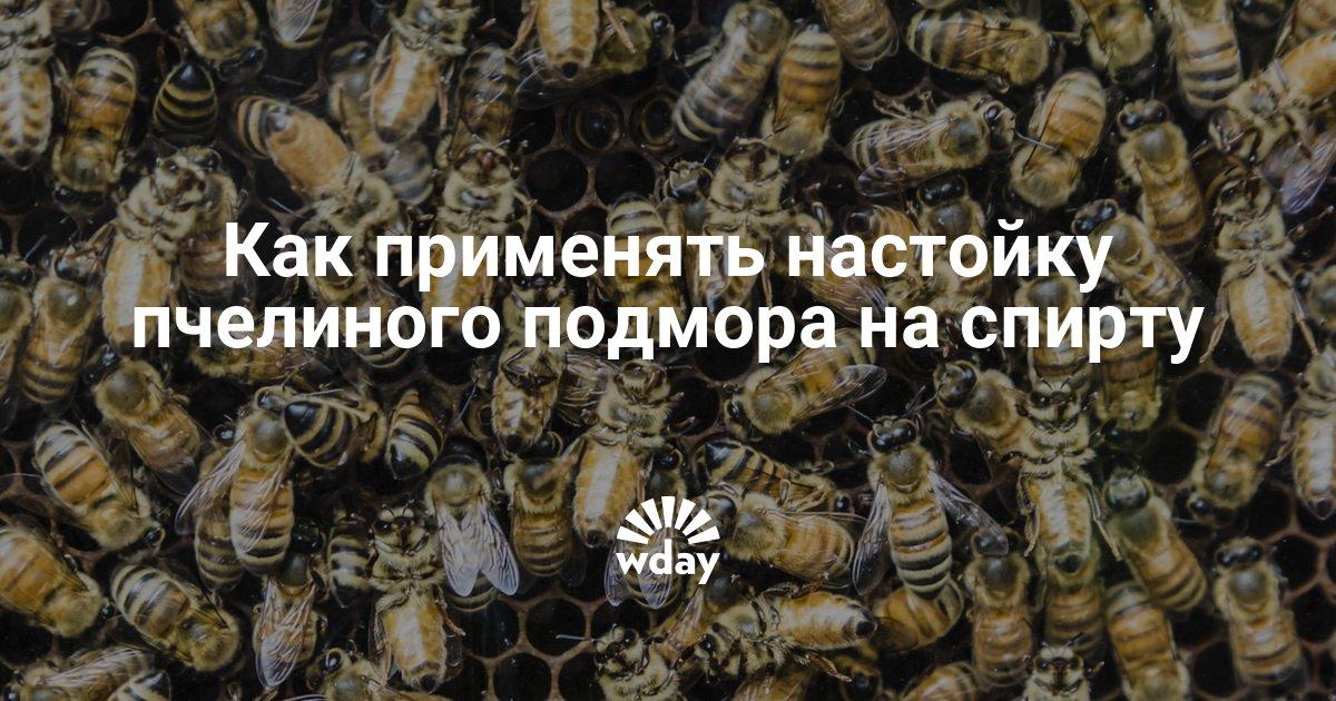 Как правильно пить пчелиный подмор на спирту ополаскиватели для полости рта без спирта