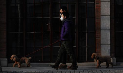 Фото №1 - Придется подождать: Эпидемиолог спрогнозировал спад заболеваемости коронавирусом в России