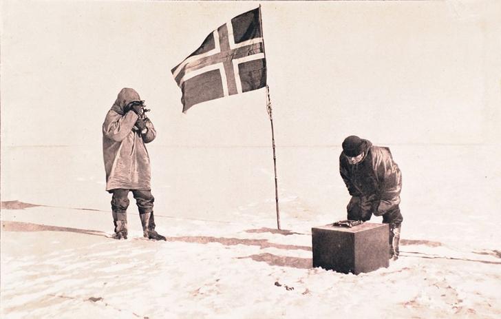 Фото №1 - Неожиданная встреча на Южном полюсе (видео)