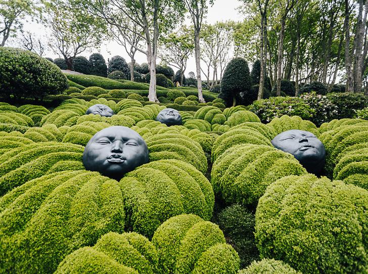 Фото №1 - Must see сезона: экспериментальные параметрические сады Этрета в Нормандии