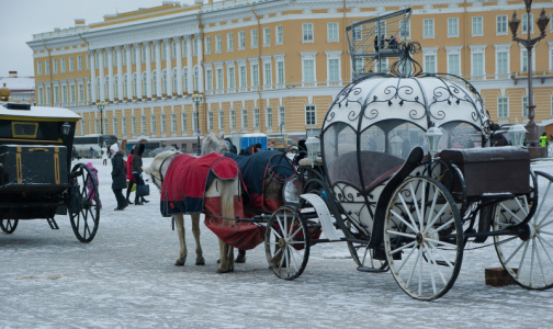Фото №1 - Петербург и Ленобласть переходят на режим повышенной готовности из-за коронавируса