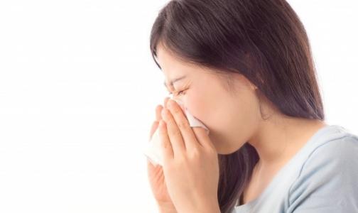 Фото №1 - В следующем сезоне ВОЗ прогнозирует активность двух новых штаммов вируса гриппа