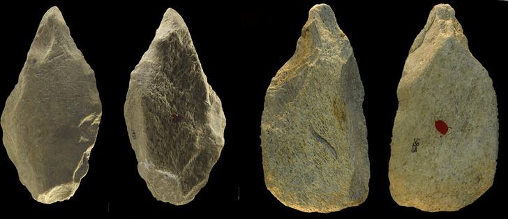 Фото №1 - В Италии обнаружены древние орудия из слоновой кости