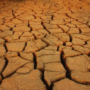 Фото №1 - Сухость вместо засухи