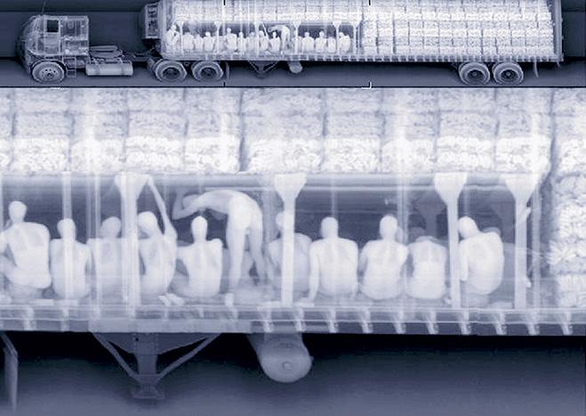Фото №1 - Таможня отбирает добро: 12 провалов контрабандистов