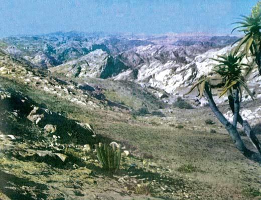 Фото №1 - Раскаленная земля Намибии