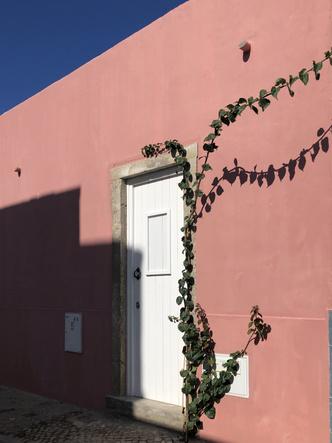 Фото №1 - Атмосферный дом с террасой в Португалии