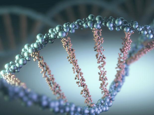 Фото №2 - Генетическое омоложение: исследователь Лиз Пэрриш стала на 20 лет моложе